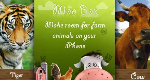 Moo box – What sound does the frog make?