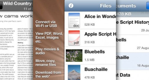 Files: A convenient way to exchange and display data