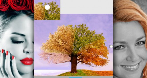 Color Splash Effect Pro: New color effects for your photos